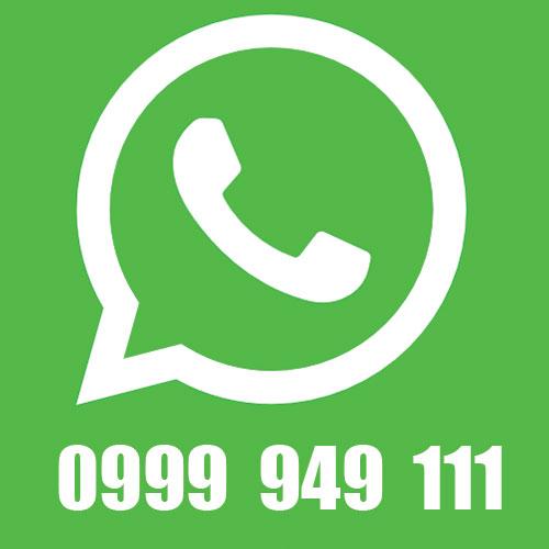 Escribenos a whatsapp